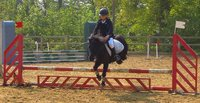 STAGES D'EQUITATION